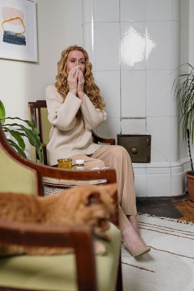 purificateur air contre allergie animaux